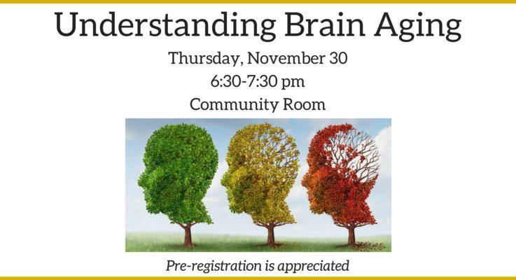 Understanding Brain Aging